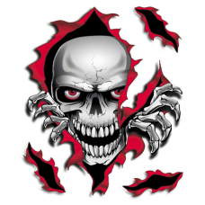 Наклейка Best Skull
