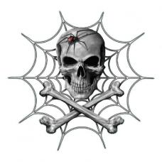 Наклейка  Spider And Skull