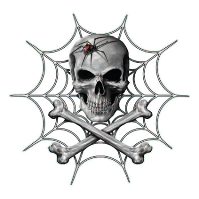 Наклейка  Spider And Skull