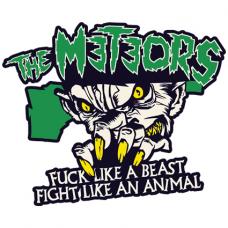 Наклейка The Meteors